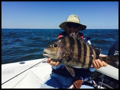 Jim with Huge Sheepshead
